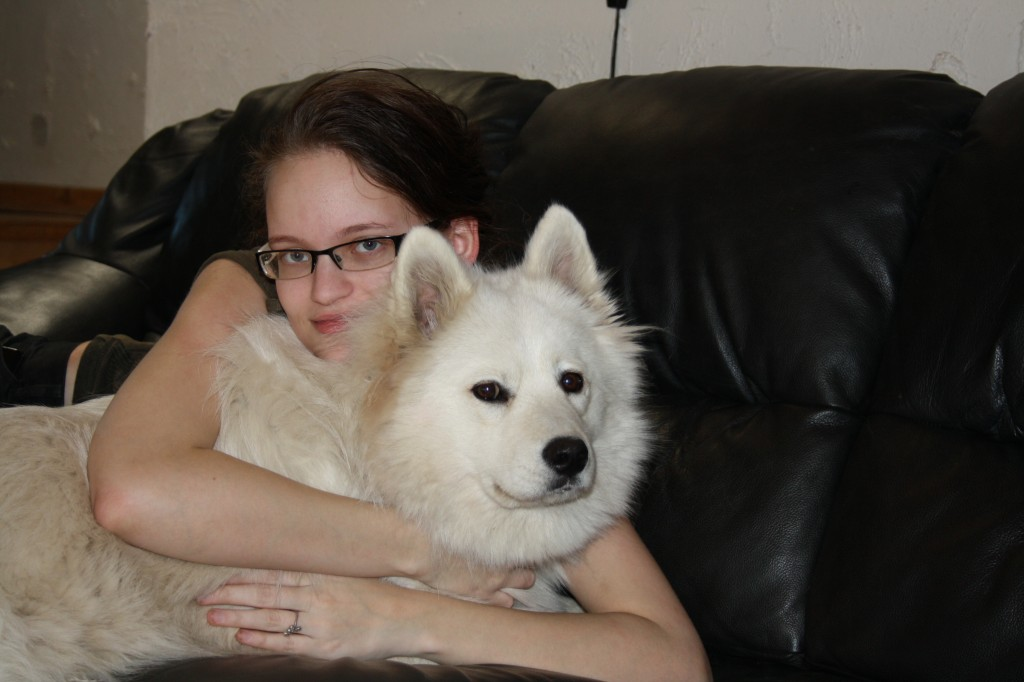 Samoyed Dog Hug