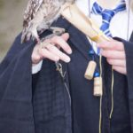 Owl Harry Potter