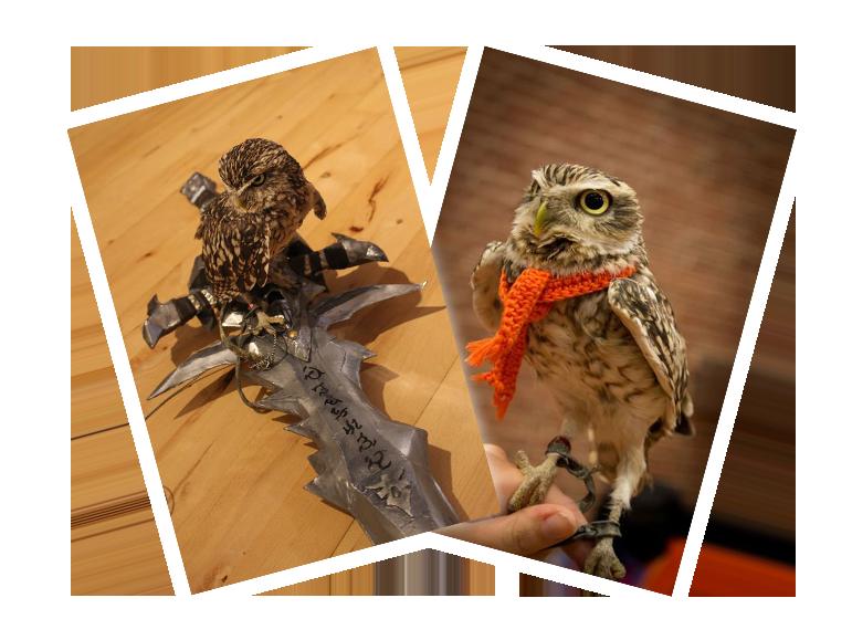 Owl Frostmourne Scarf