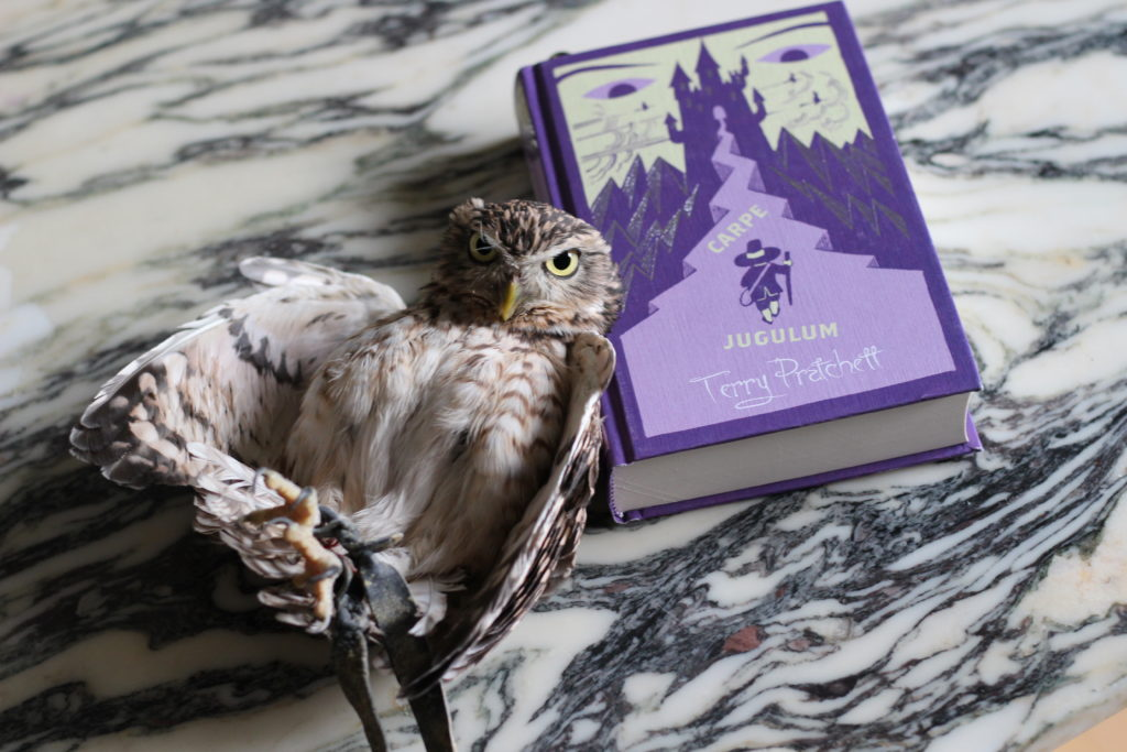 Carpe Jugulum Owl Book