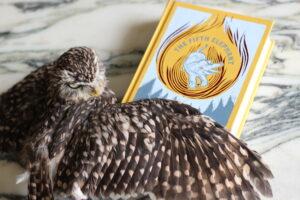 The Fifth Elephant Terry Pratchett owl