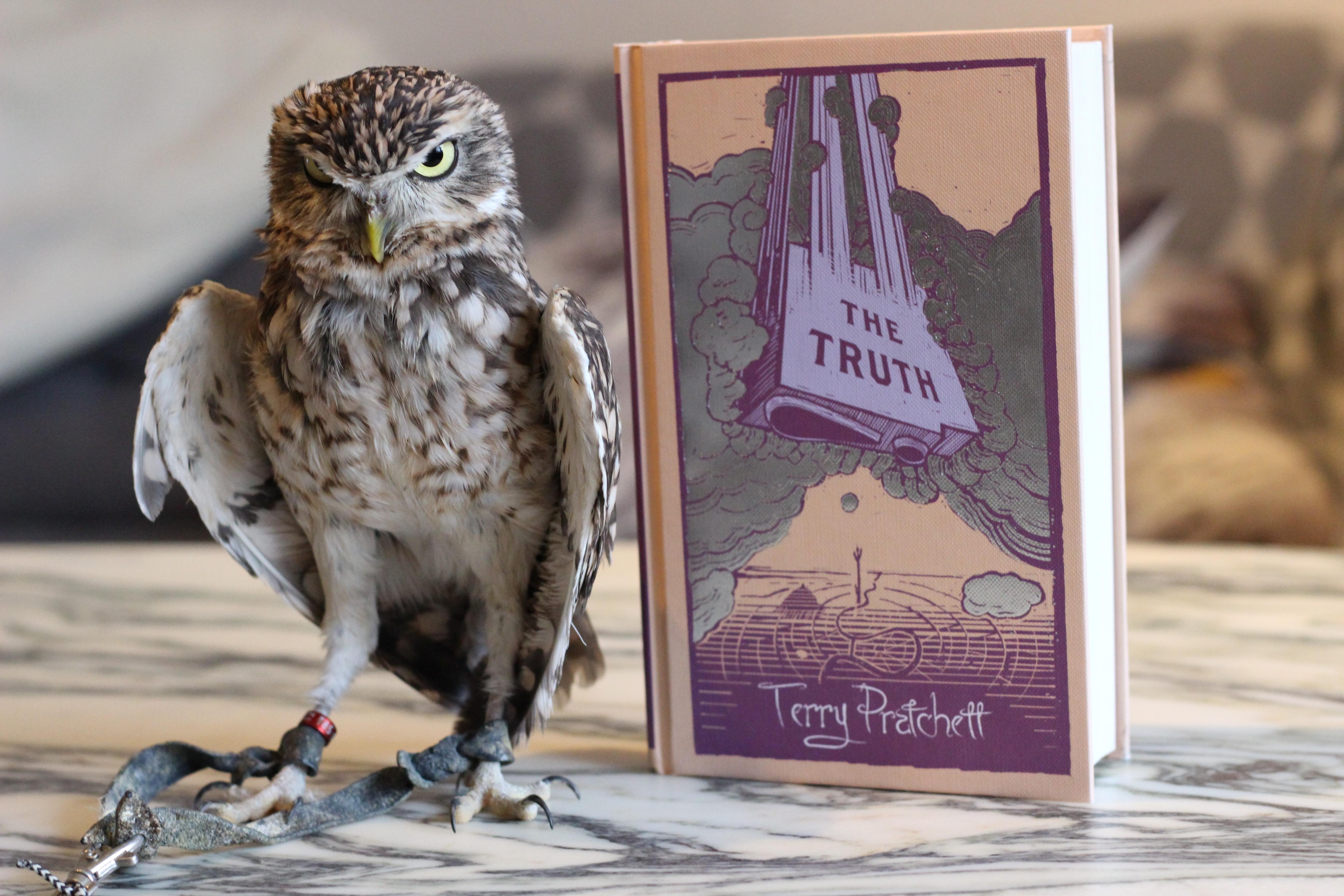 The Truth Terry Pratchett Owl
