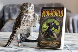 Mogworld Yahtzee Croshaw Owl