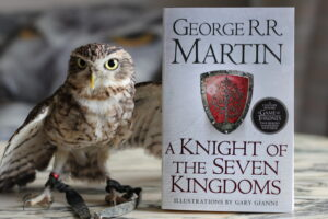A Knight of the Seven Kingdoms George R. R. Martin