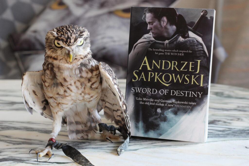 Sword of Destiny Andrzej Sapkowski owl