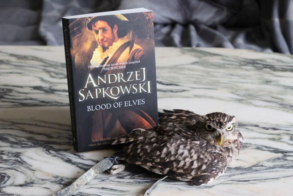 Blood of Elves Andrzej Sapkowski owl
