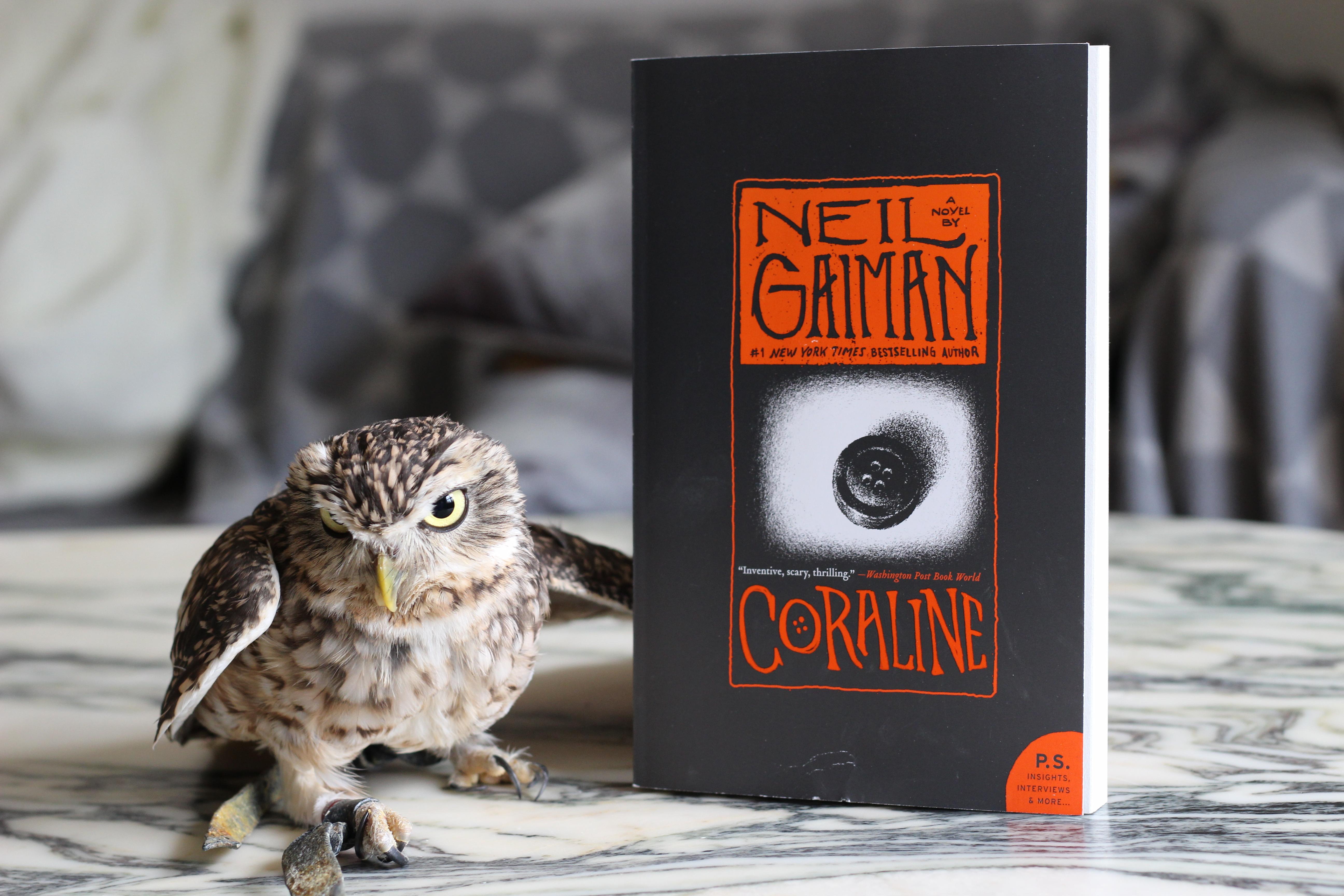 Coraline Neil Gaiman Owl
