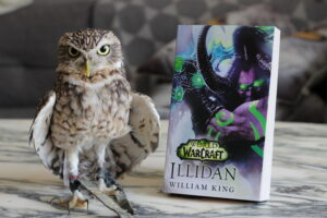 Illidan William King Warcraft Owl