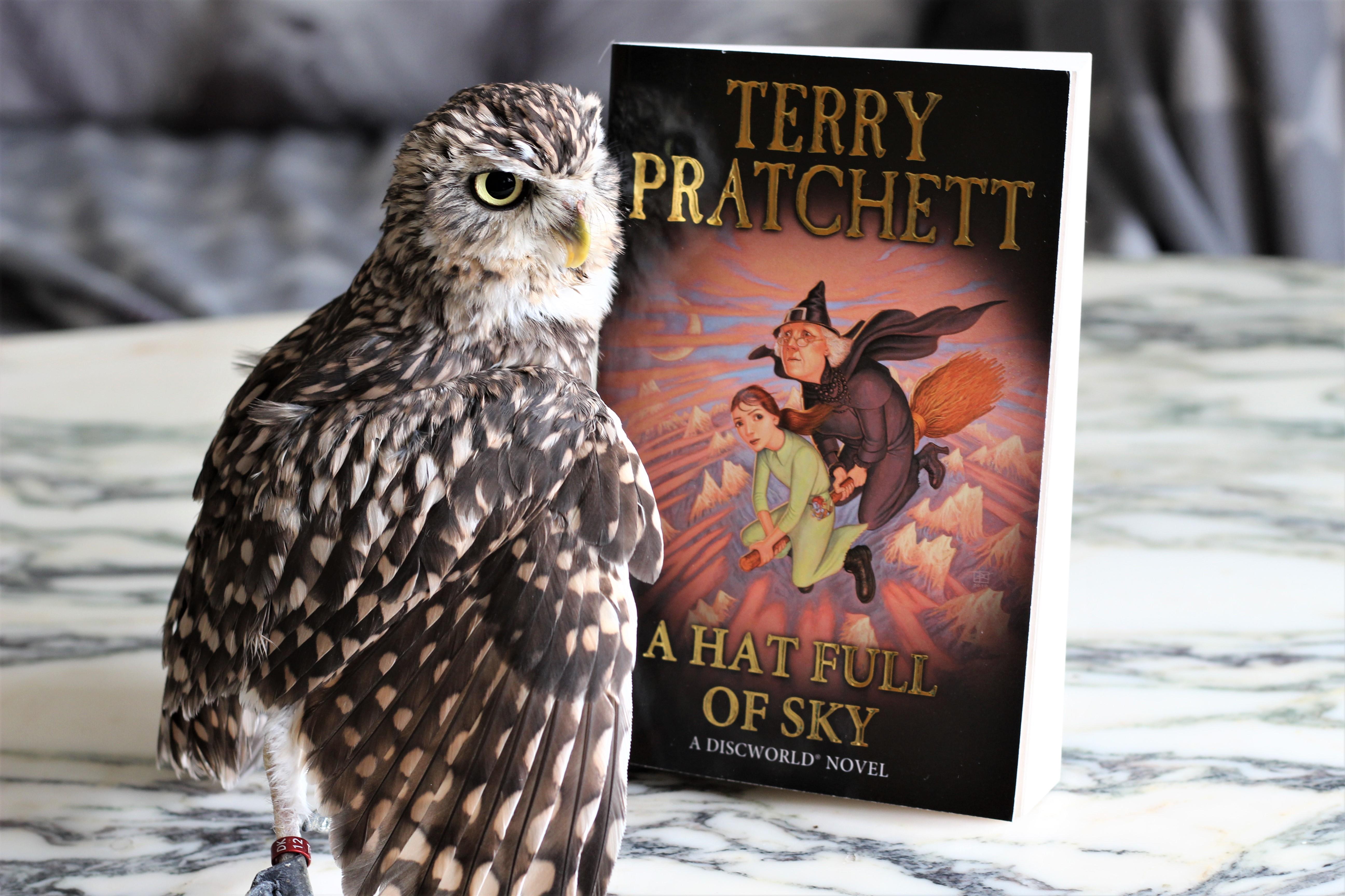 A Hat Full of Sky Terry Pratchett owl
