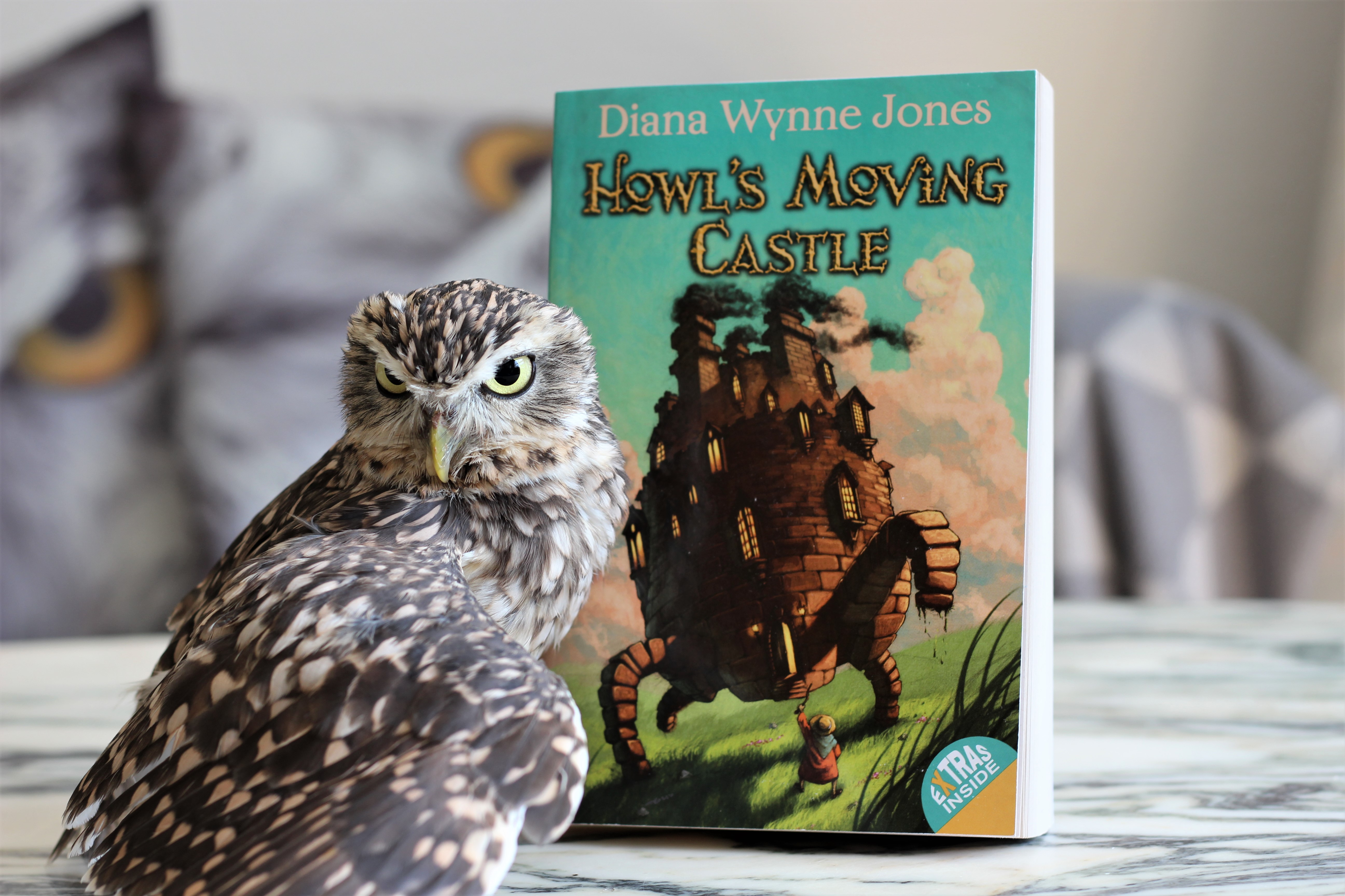 Howl's Moving Castle Diana Wynne Jones Owl