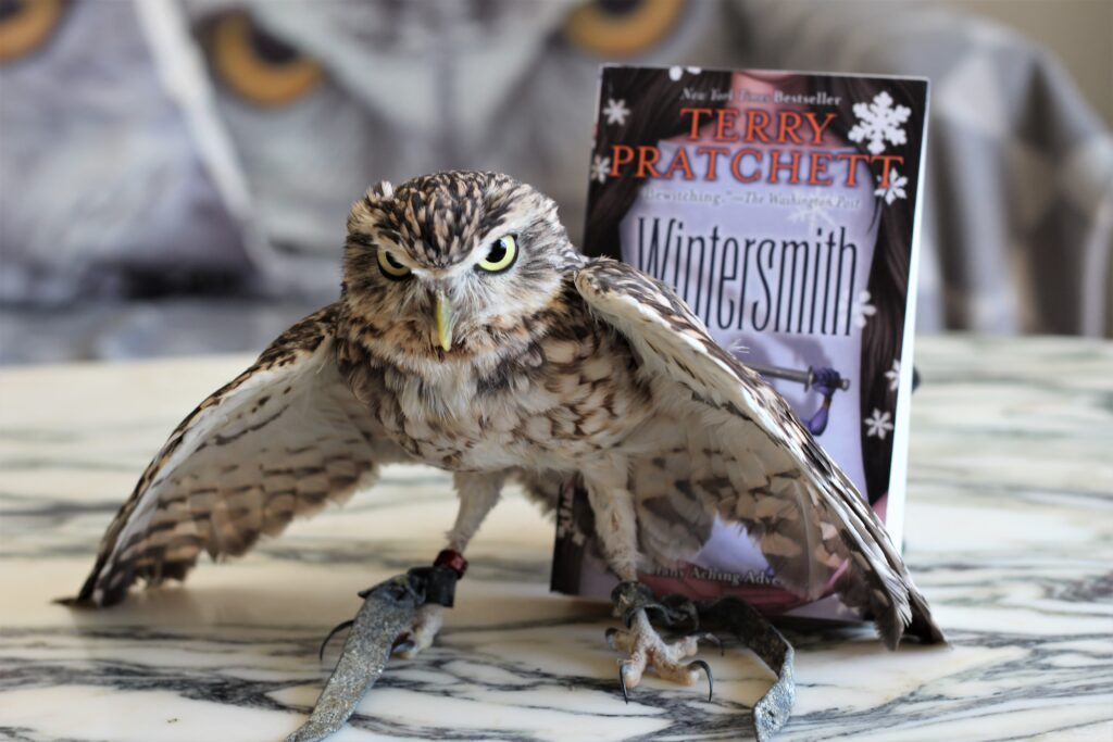 Wintersmith Terry Pratchett owl