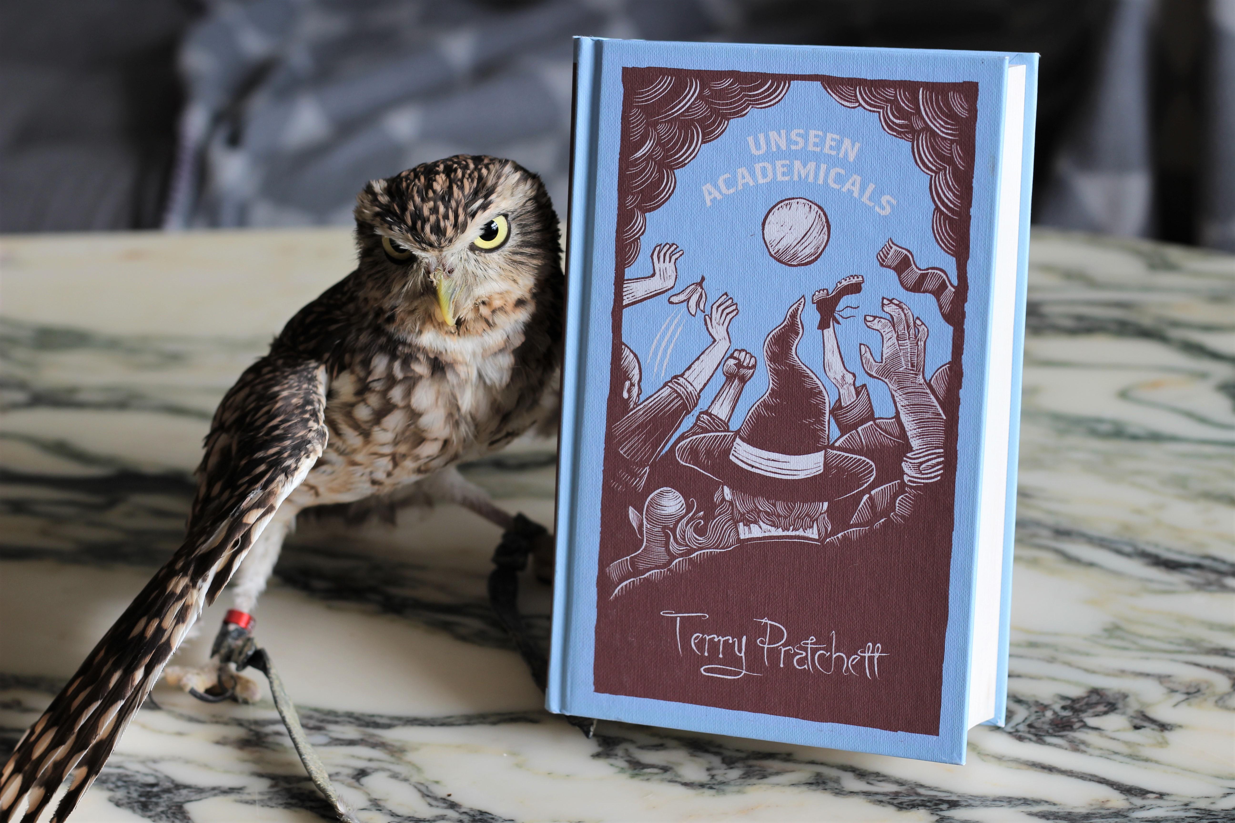 Unseen Academicals Terry Pratchett