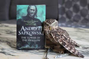 The Tower of the Swallow Andrzej Sapkowski