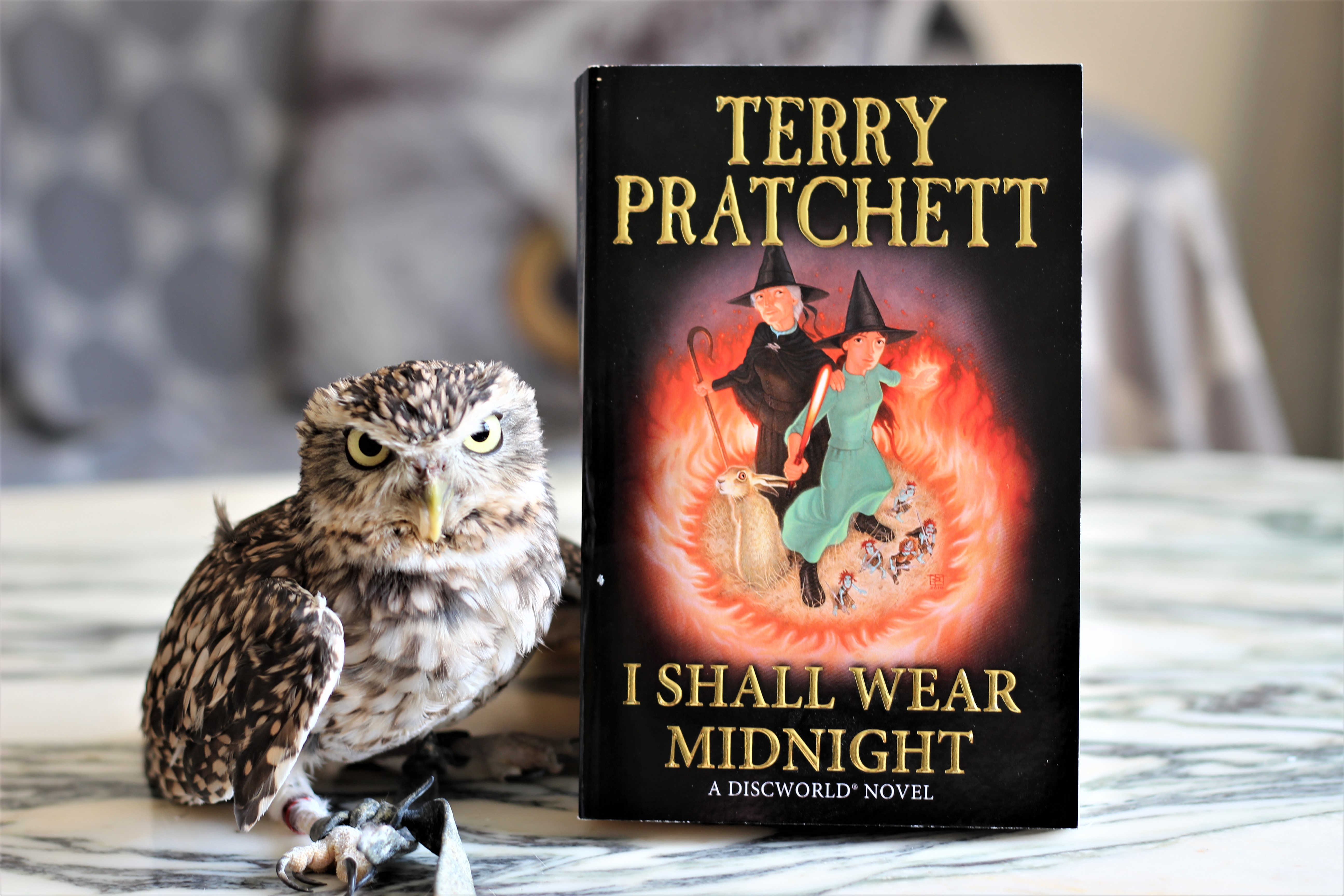 I Shall Wear Midnight Terry Pratchett