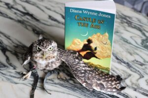 Castle in the Air Diana Wynne Jones