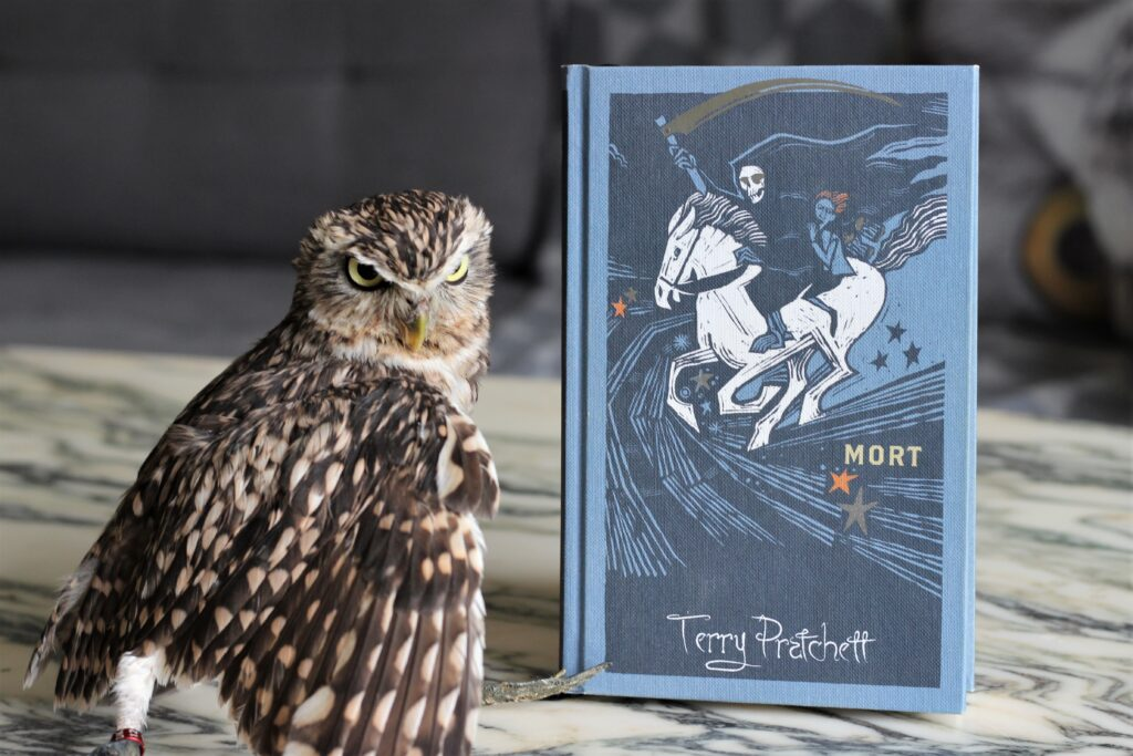 Mort Terry Pratchett Collector's Edition