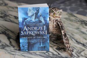 The Lady of the Lake Andrzej Sapkowski