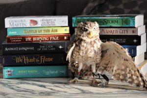 Burrowing Owl Books