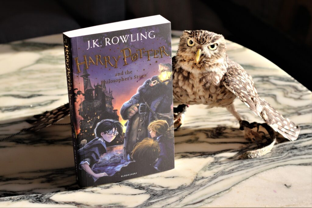 Harry Potter and the Philosopher's Stone Owl