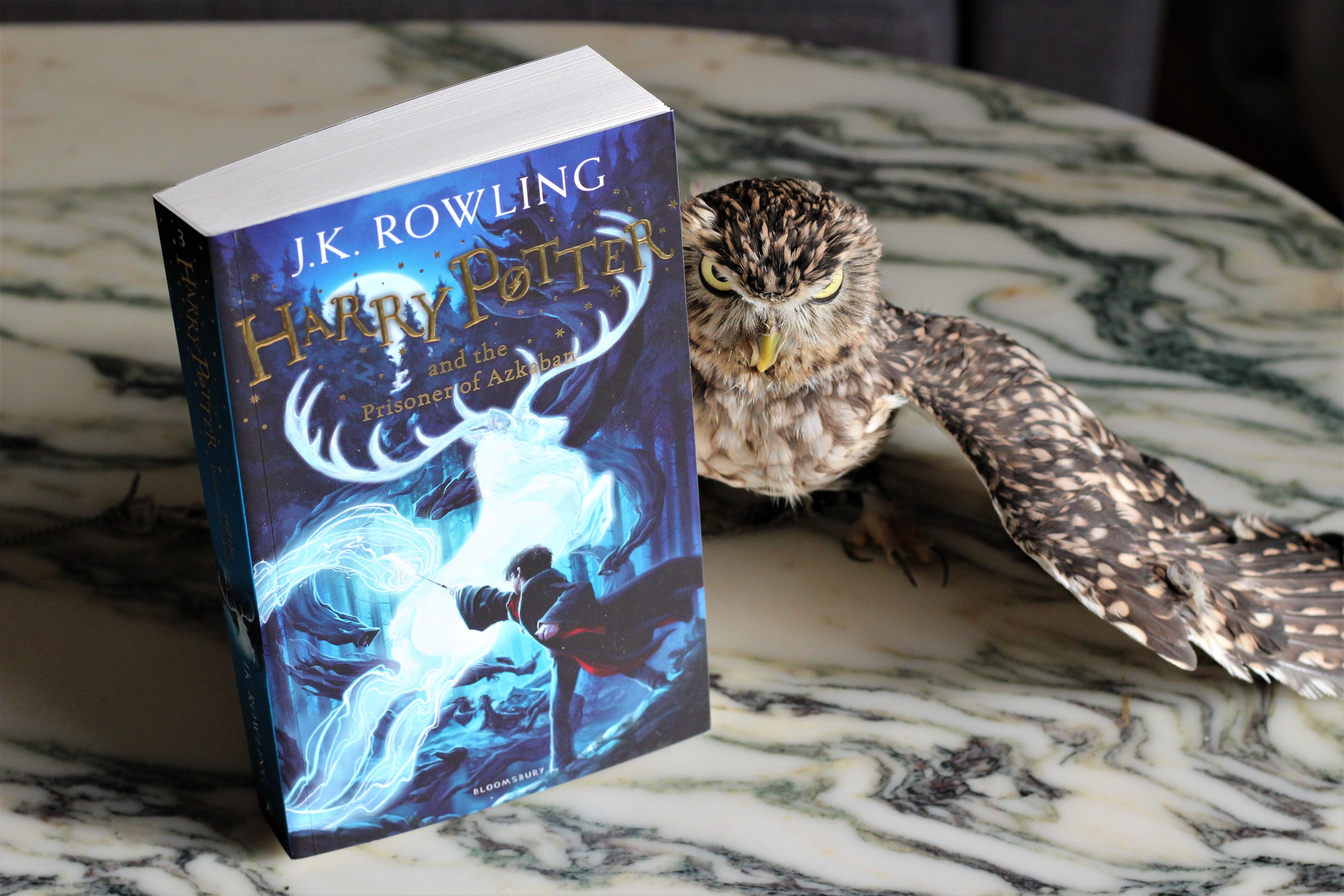 Harry Potter and the Prisoner of Azkaban owl