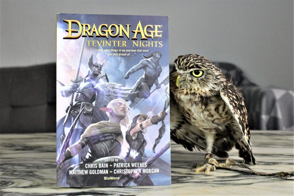 Dragon Age Tevinter Night