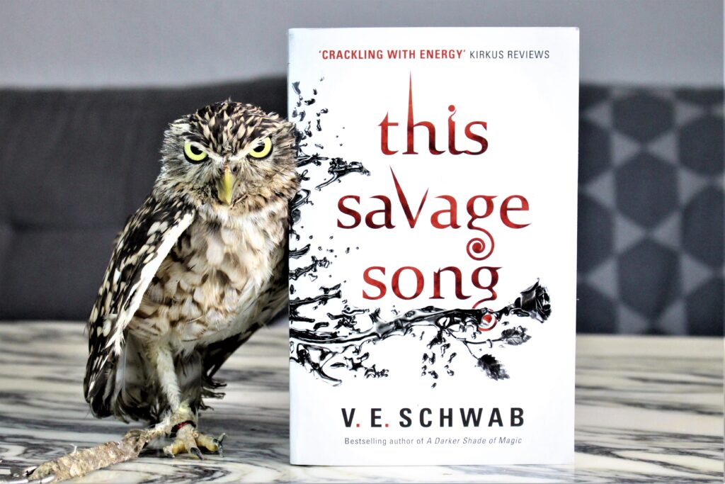 This Savage Song by V. E. Schwab