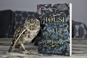 House of Salt and Sorrow